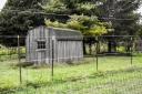 Gray day gray shed